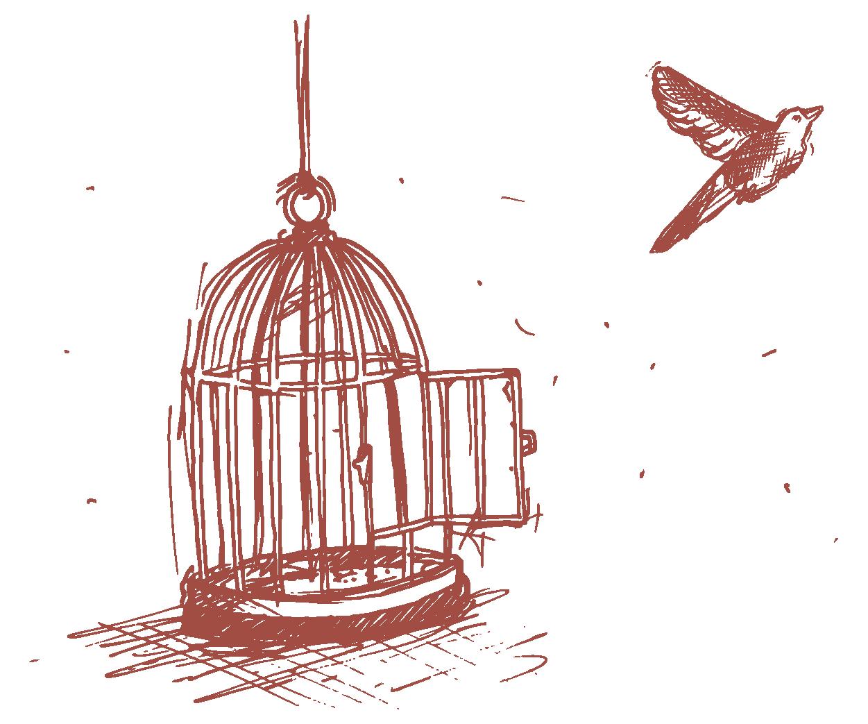 L'oiseau de liberté